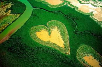 【ハート型地形01】_ニューカレドニアのハート型のマングローブの森1[1].jpg