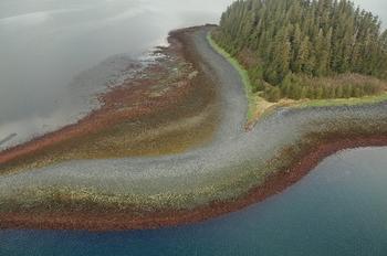 【ハート型地形18】アラスカのプリンス・ウィリアム湾にある小さな島.jpg