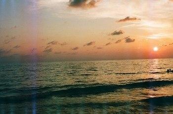 夕暮れの海に泳ぐ.jpg